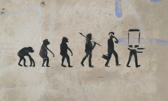 Evolution drawing