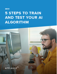 5 Steps for Training and Testing AI Algorithms